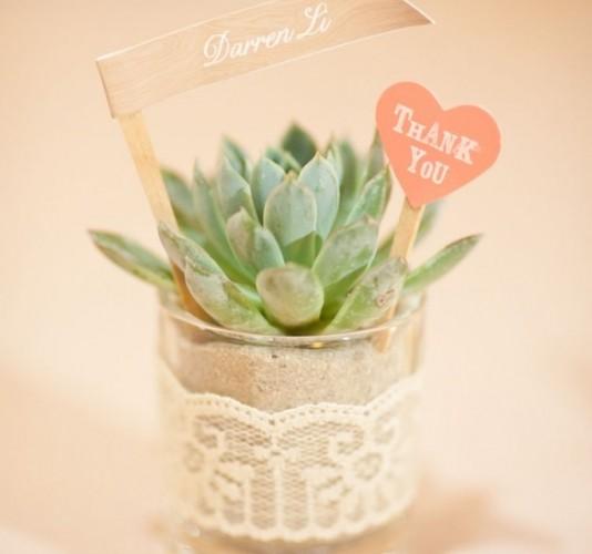Thank-You-Plant-2xigg5obu0qi9c2lhpcx6o